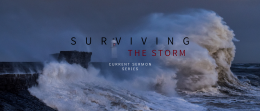 Surviving the Storm Week 11